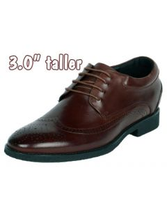 """Brown Leather Punching Detail Wingtip with 3"""" Height Elevation, CYD21BR"""