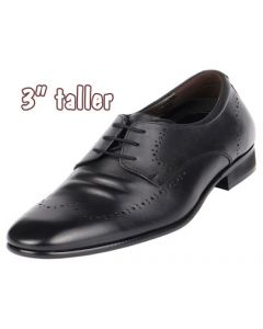 """Hollywood Celebrity Love Wingtip Gentlemen Height Shoes 3"""" Tall"""